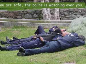 полиция 001