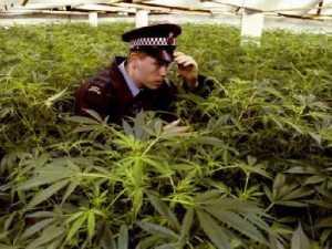 полиция 005