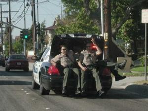 полиция 043